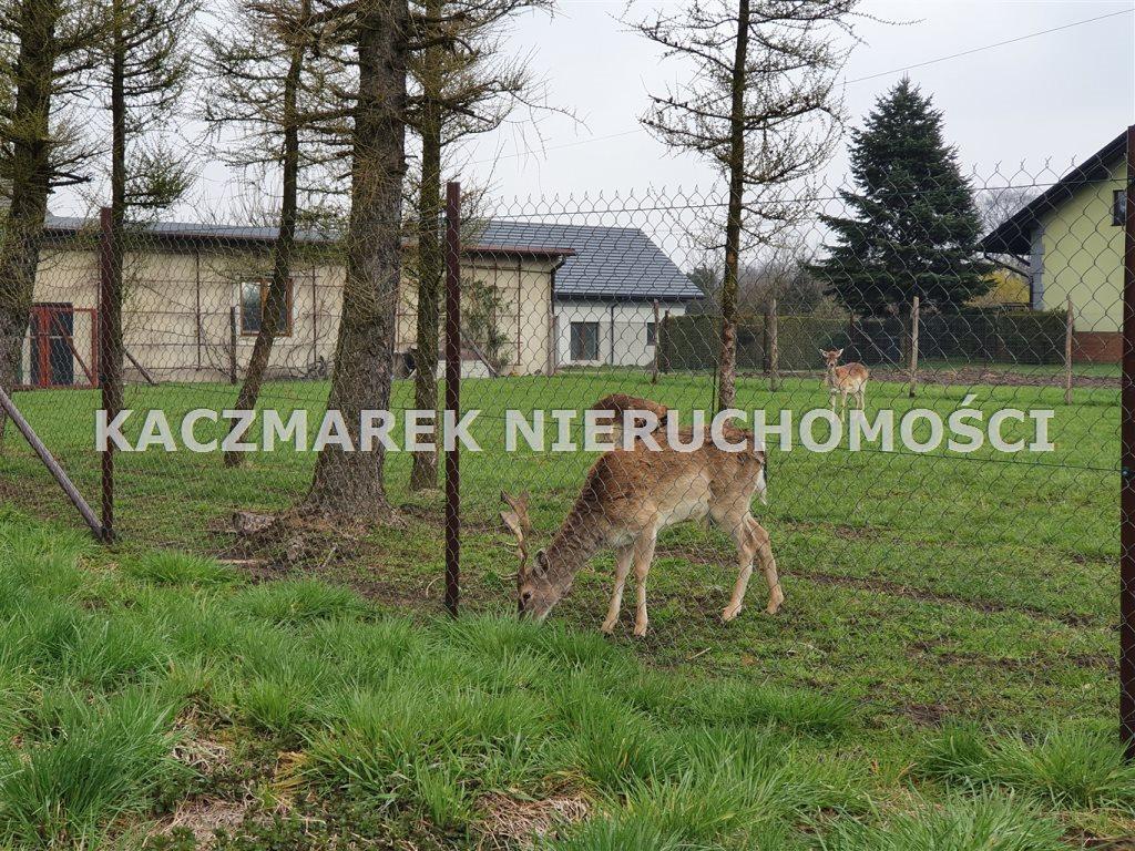 Działka inna na sprzedaż Radostowice  961m2 Foto 8