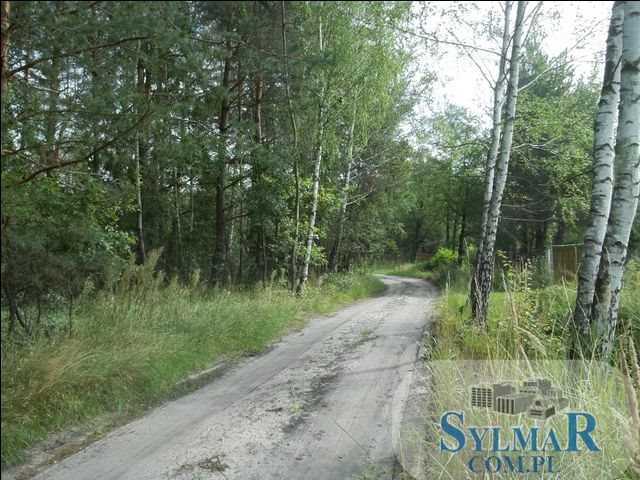 Działka leśna na sprzedaż Ostrybór, Ostrybór  27900m2 Foto 4