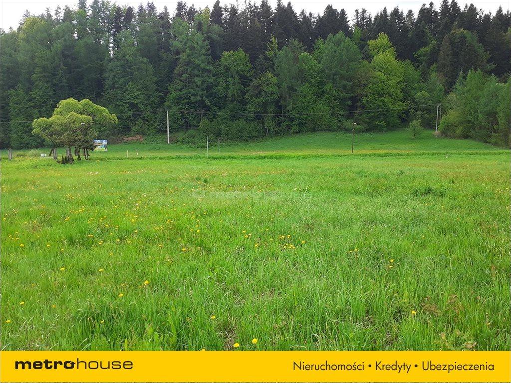 Działka rolna na sprzedaż Łączki, Lesko  3500m2 Foto 8