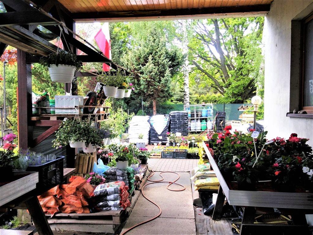 Lokal użytkowy na sprzedaż Rynia, ul. Główna  130m2 Foto 7
