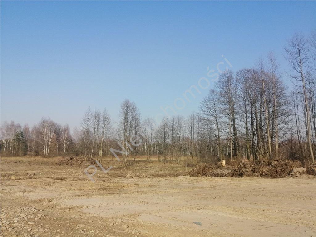 Działka budowlana na sprzedaż Choszczówka Stojecka  1994m2 Foto 2