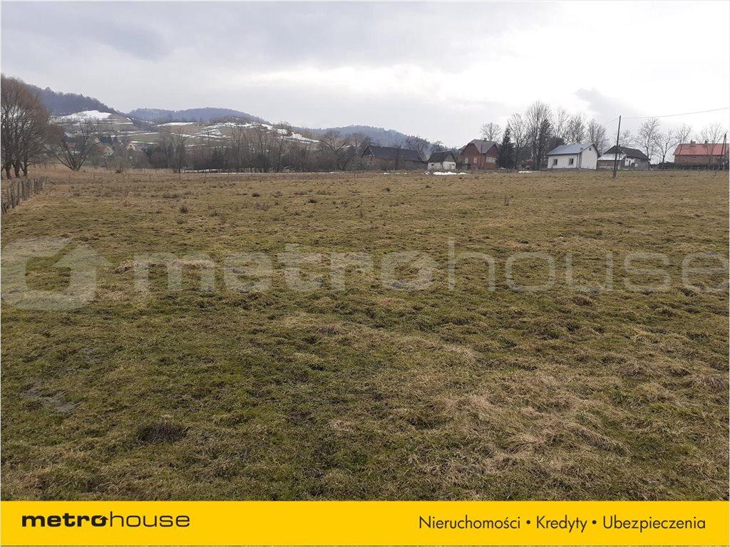 Działka rolna na sprzedaż Terka, Solina  7800m2 Foto 4