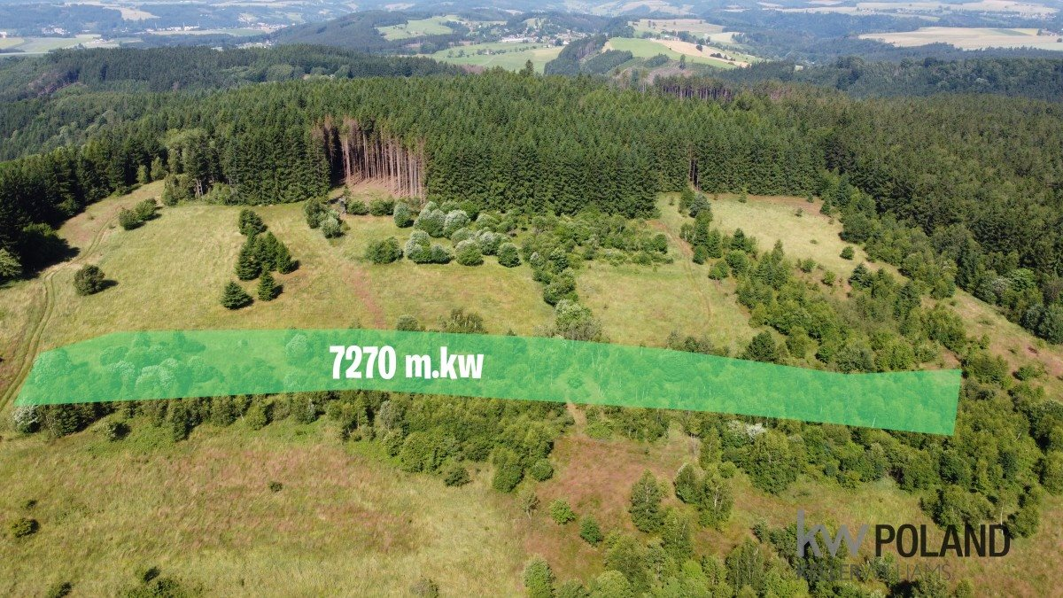 Działka rolna na sprzedaż Kudowa-Zdrój, Pstrążna  7269m2 Foto 1