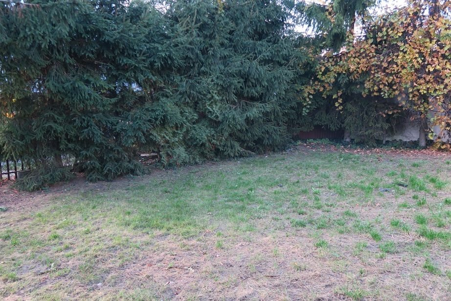 Dom na sprzedaż Żyrardów  220m2 Foto 9