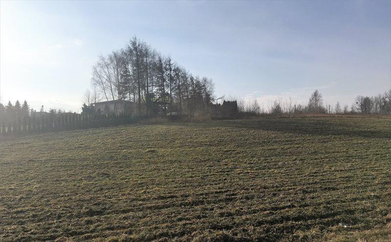 Działka budowlana na sprzedaż Mikołów, Gniotek, Rolnicza  771m2 Foto 1