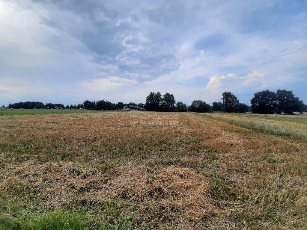 Działka rolna na sprzedaż Żurawieniec  22500m2 Foto 2