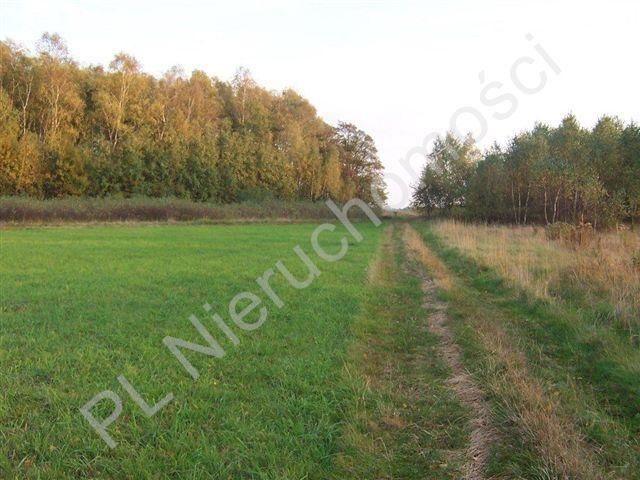 Działka rolna na sprzedaż Czarna  9431m2 Foto 2
