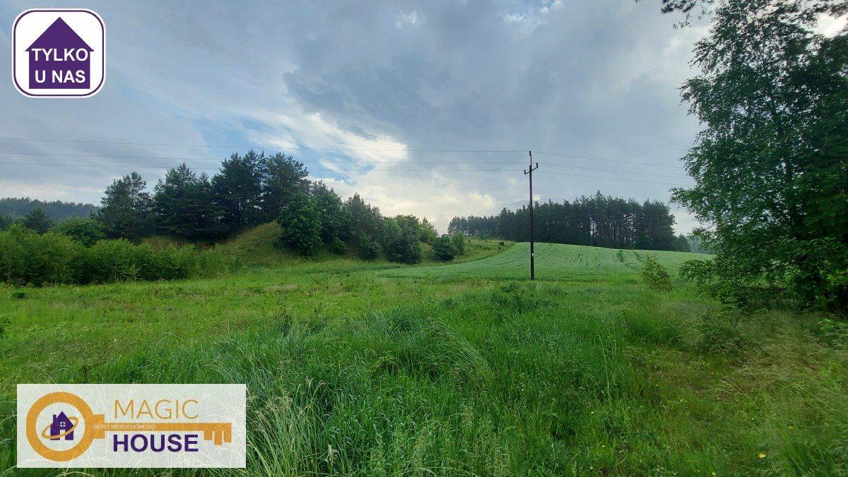 Działka leśna na sprzedaż Gołubie  18900m2 Foto 6