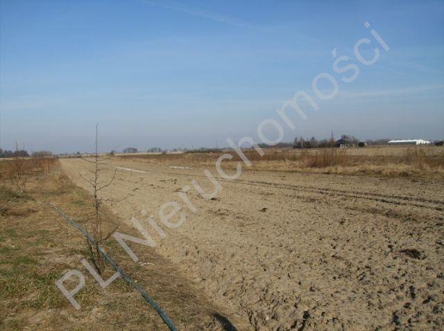 Działka budowlana na sprzedaż Błonie  6000m2 Foto 5