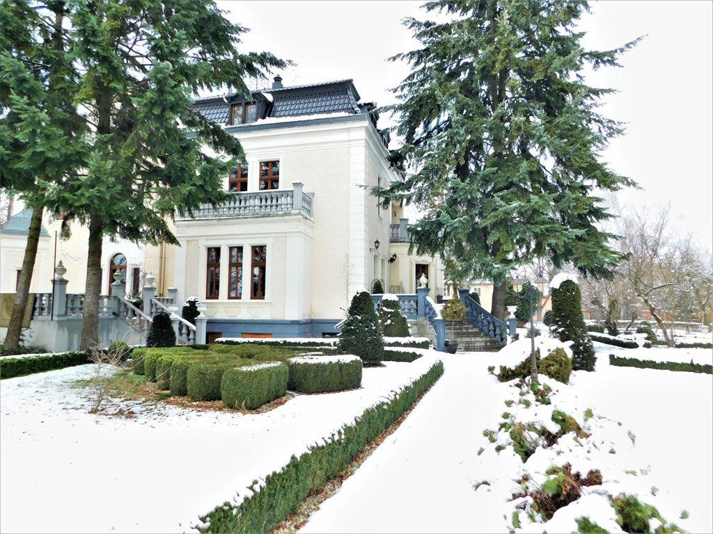 Lokal użytkowy na sprzedaż Opole  1056m2 Foto 3