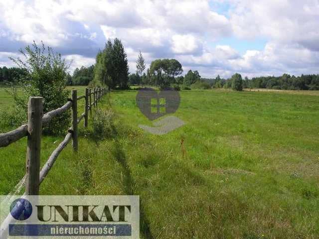 Działka rolna na sprzedaż Woźnawieś  21700m2 Foto 2