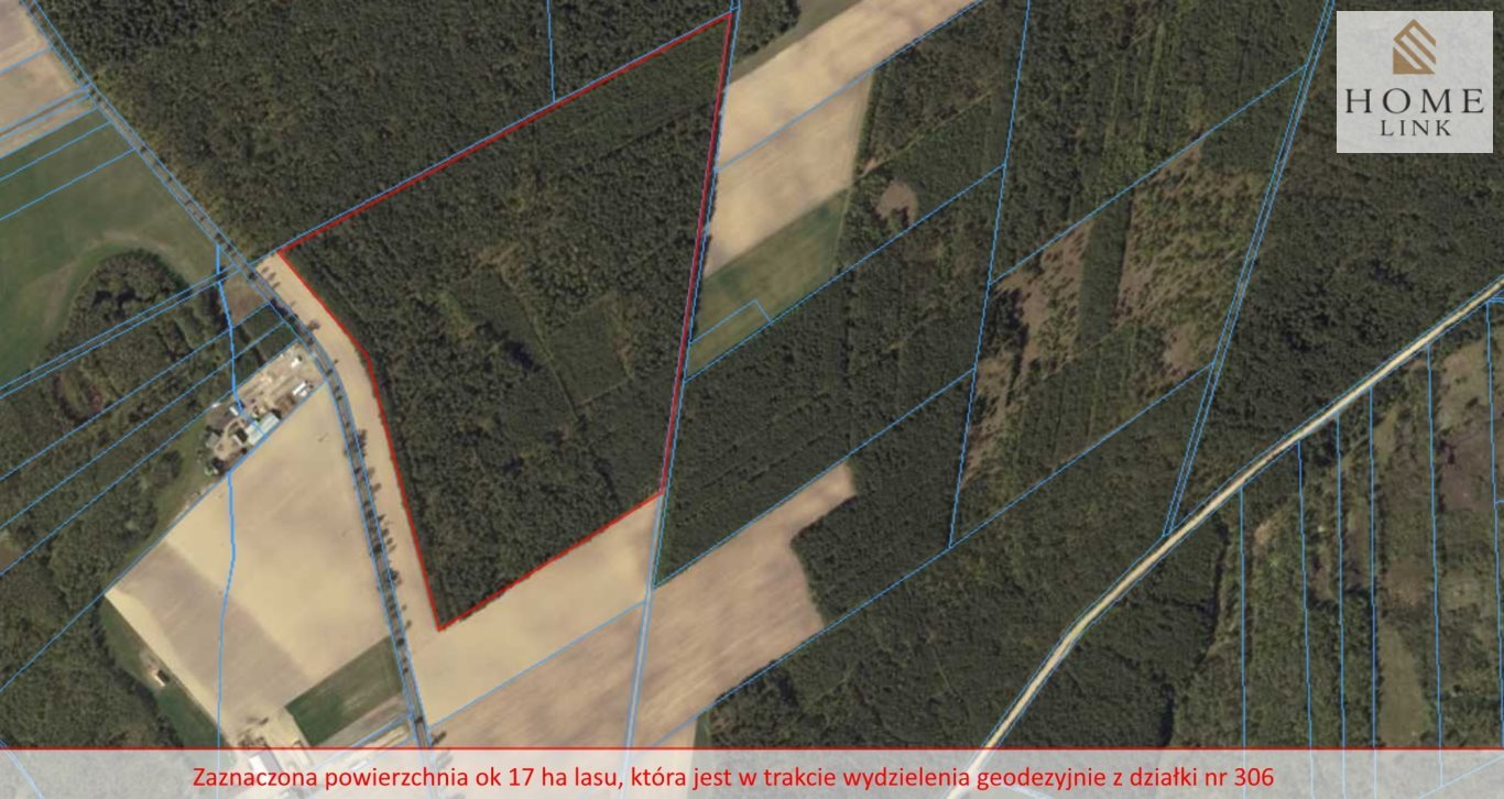 Działka leśna na sprzedaż Nowy Dwór  171900m2 Foto 2