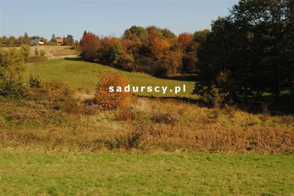 Działka rolna na sprzedaż Kraków, Swoszowice, Rajsko, Golkowicka  2761m2 Foto 6