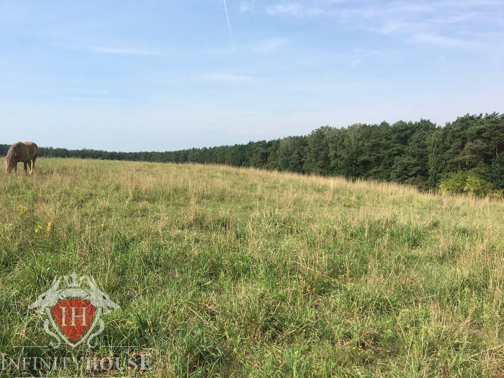 Działka rolna na sprzedaż Jaskółowo  56700m2 Foto 5