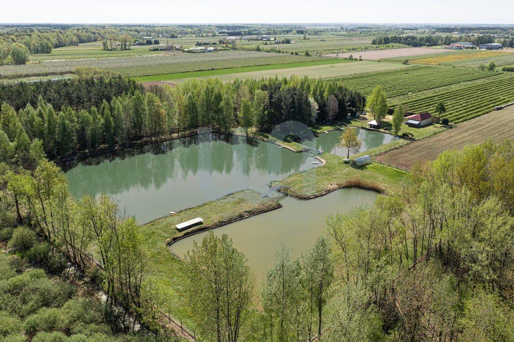 Działka siedliskowa na sprzedaż Zimnice, Piekarska  24000m2 Foto 8
