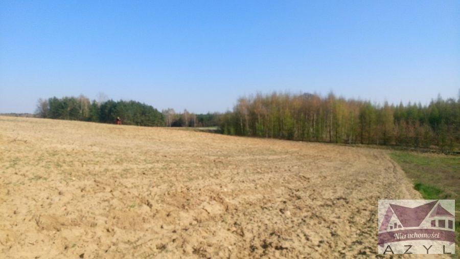 Działka rolna na sprzedaż Lubcza  5000m2 Foto 6