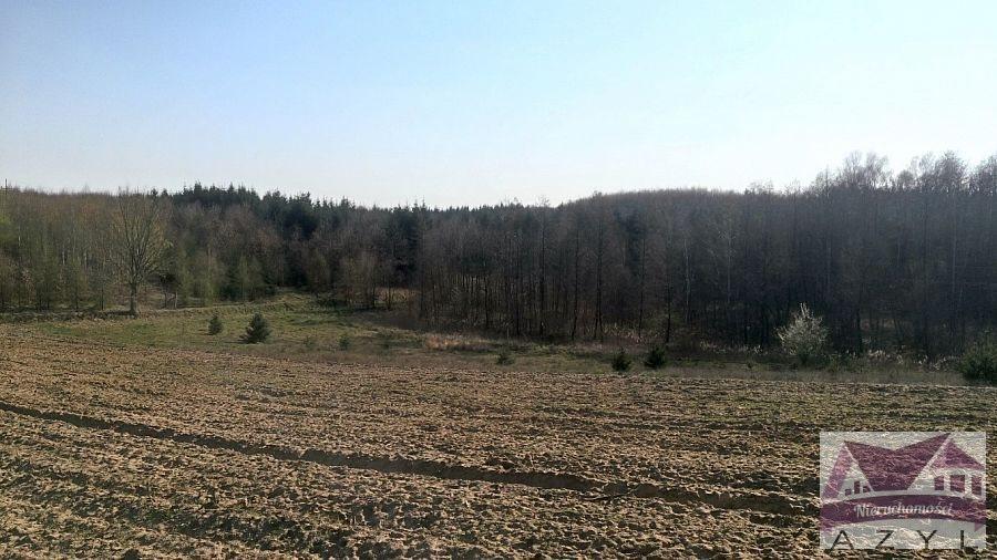 Działka rolna na sprzedaż Lubcza  5000m2 Foto 2