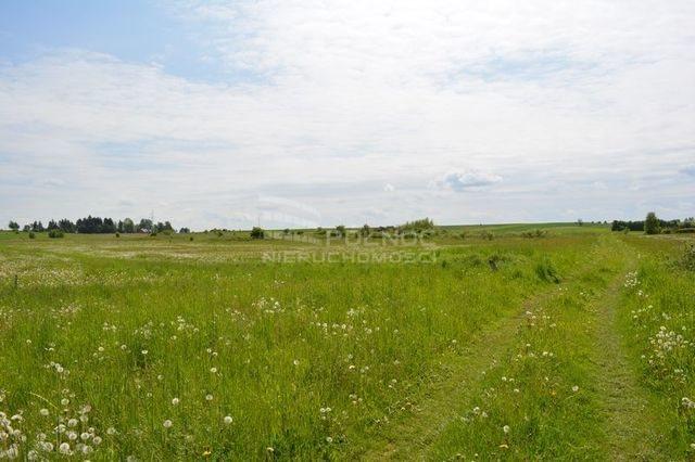 Działka rolna na sprzedaż Dobrzyniewo Kościelne  3196m2 Foto 9