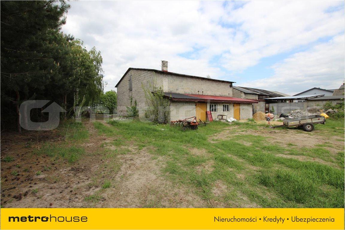 Działka rolna na sprzedaż Feliksów, Poddębice  7000m2 Foto 6