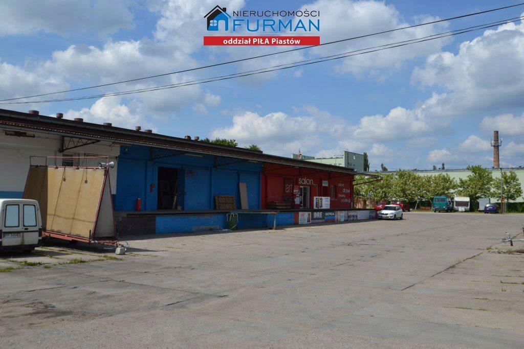 Lokal użytkowy na sprzedaż Piła, Staszyce  3210m2 Foto 5