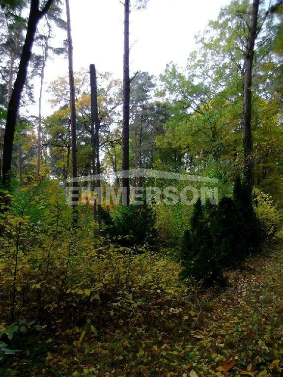 Działka leśna na sprzedaż Piaseczno, Zalesie Dolne  2511m2 Foto 2
