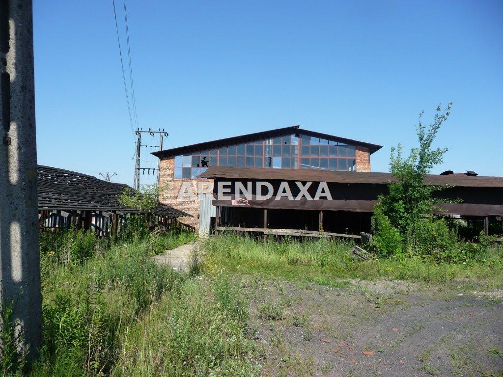 Lokal użytkowy na sprzedaż Wrzosowa  21270m2 Foto 6