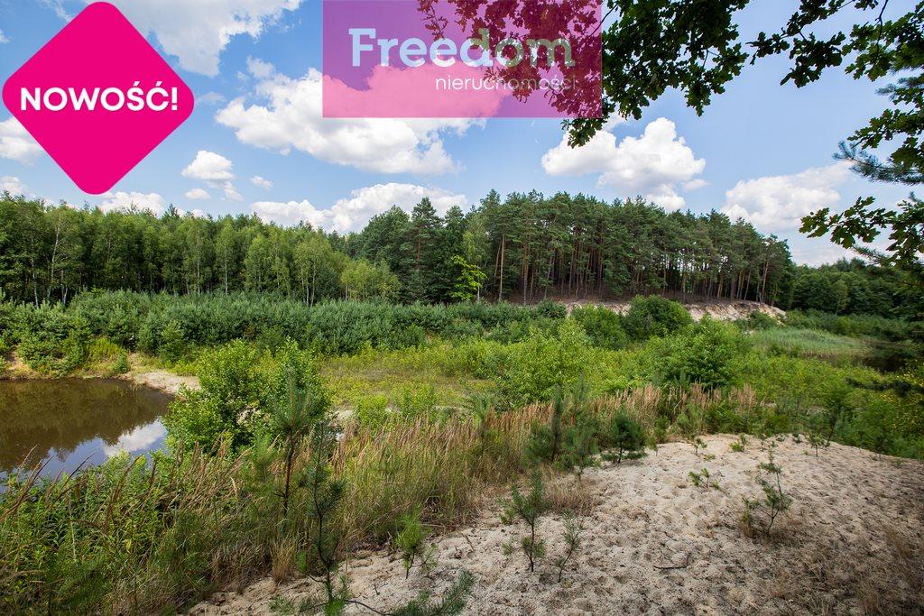 Działka leśna na sprzedaż Zielonka  38097m2 Foto 3