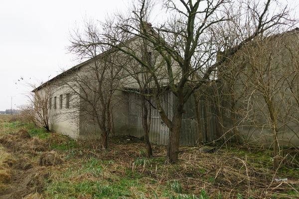 Działka budowlana na sprzedaż Sławno, Janów  25800m2 Foto 7