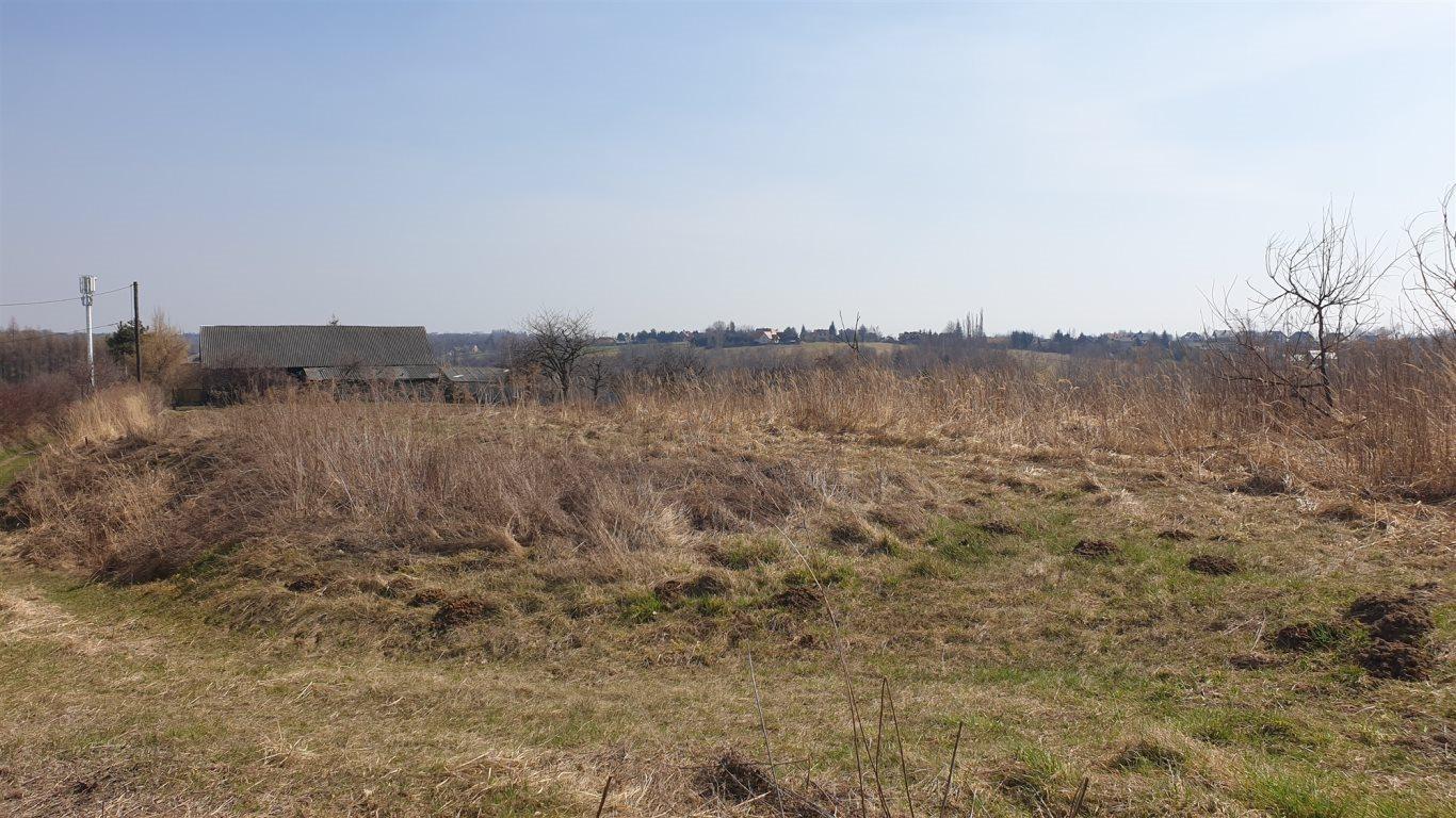 Działka rolna na sprzedaż Wierzchowie  4900m2 Foto 1