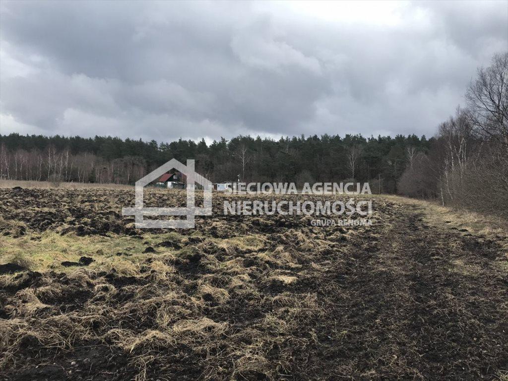 Działka rolna na sprzedaż Sasino  3148m2 Foto 1