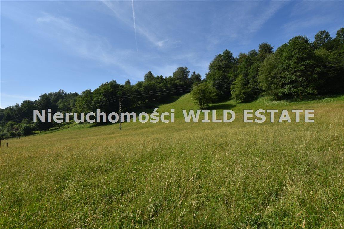 Działka rolna na sprzedaż Lesko, Łączki  4297m2 Foto 1