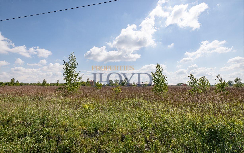 Działka rolna na sprzedaż Wola Wągrodzka, Ogrodowa  1000m2 Foto 5