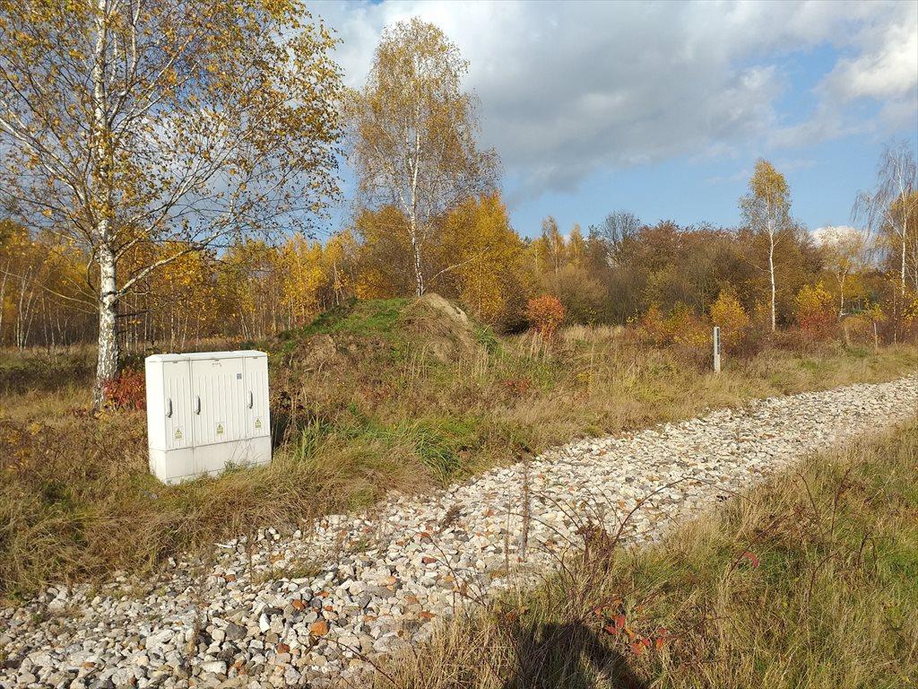 Działka budowlana na sprzedaż Pilchowice, ul. Wielopole  775m2 Foto 1