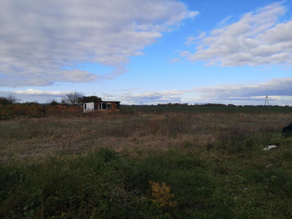 Działka budowlana na sprzedaż Mątowy Wielkie  3587m2 Foto 13
