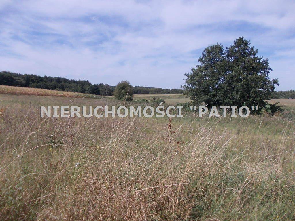 Działka inna na sprzedaż Zbierkowo, Zbierkowo  6000m2 Foto 8