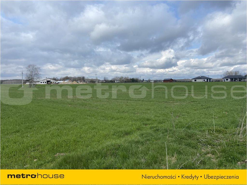 Działka rolna na sprzedaż Rogoźnica, Międzyrzec Podlaski  14100m2 Foto 2