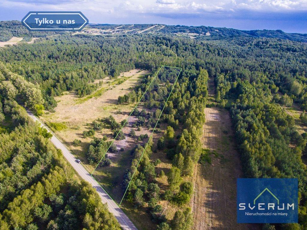 Działka leśna na sprzedaż Złoty Potok, Partyzantów  7420m2 Foto 3