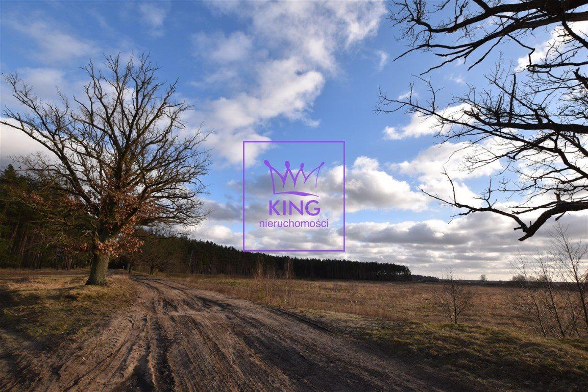 Dom na sprzedaż Sławoszewo  350m2 Foto 3