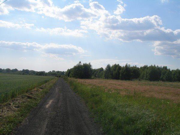 Działka siedliskowa na sprzedaż Parlino  11000m2 Foto 3
