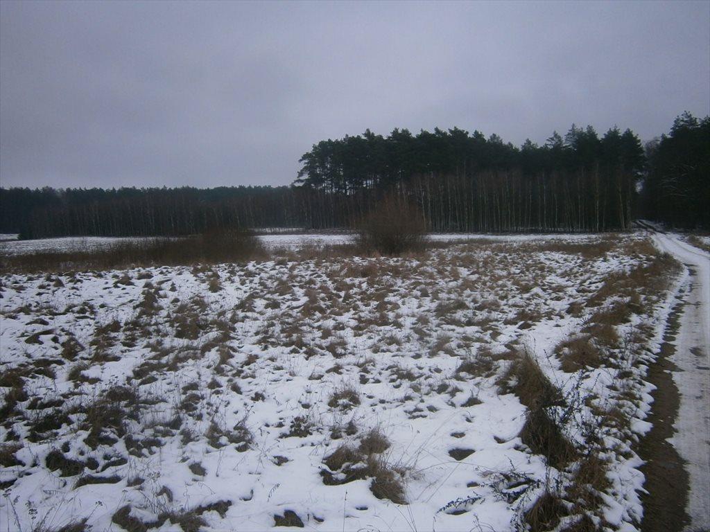 Działka rolna na sprzedaż Radawnica  47800m2 Foto 10