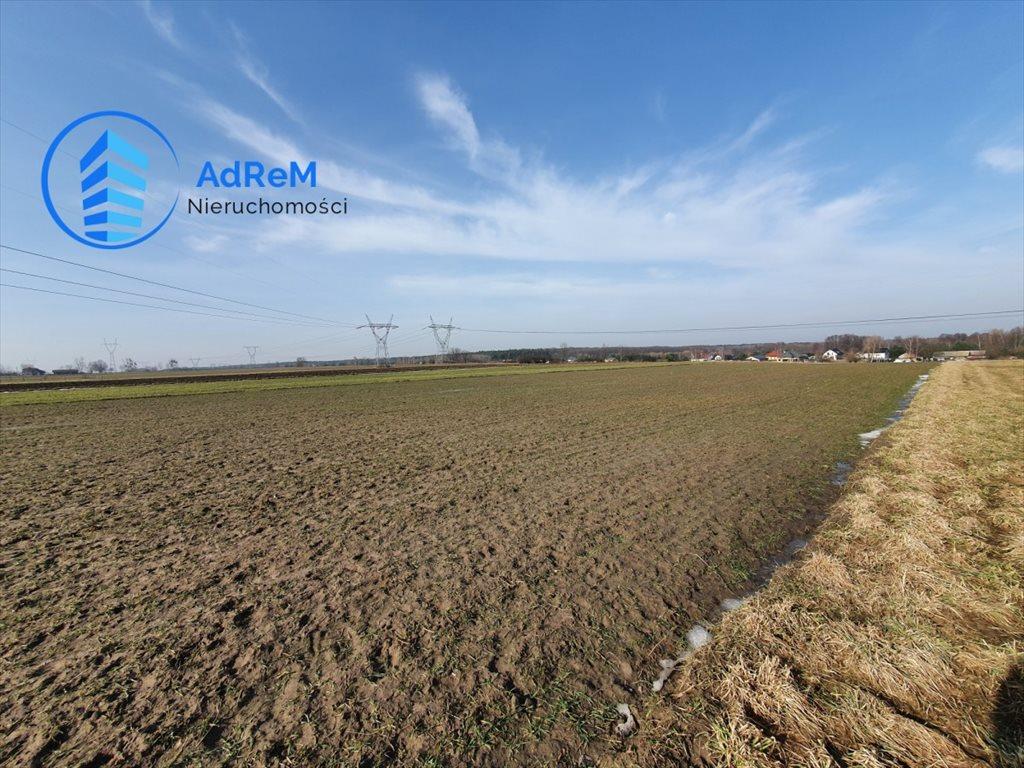 Działka rolna na sprzedaż Łazy  11000m2 Foto 1
