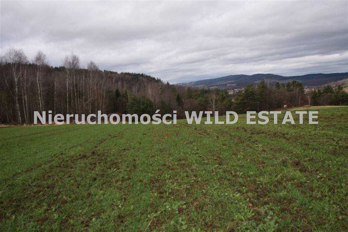 Działka rolna na sprzedaż Solina, Berezka  9520m2 Foto 12