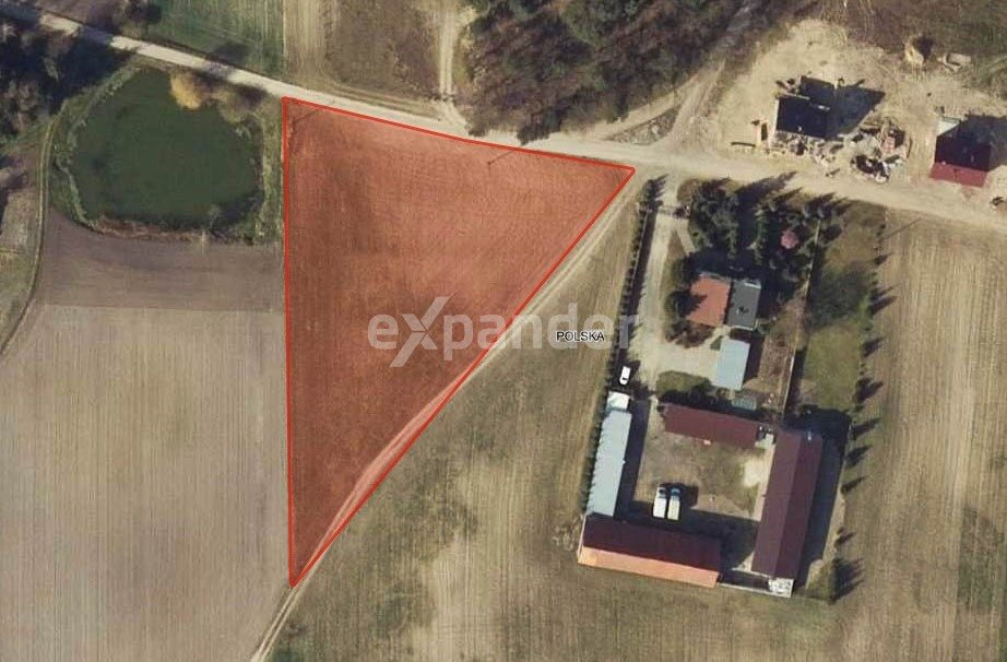 Działka rolna na sprzedaż Potrzanowo  4800m2 Foto 5