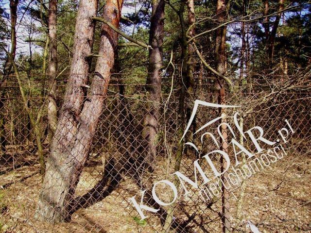 Działka budowlana na sprzedaż Owczarnia  6200m2 Foto 4