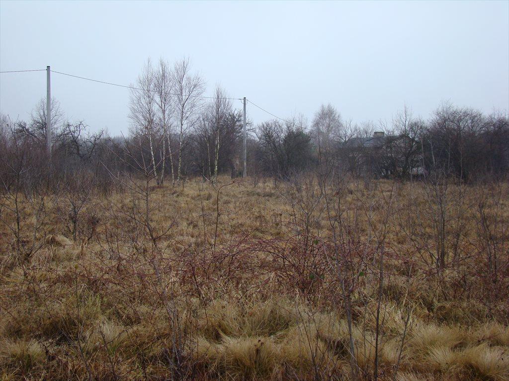 Działka siedliskowa na sprzedaż Tomaszew, okolice Żyrardowa, okolice Żyrardowa  16200m2 Foto 6