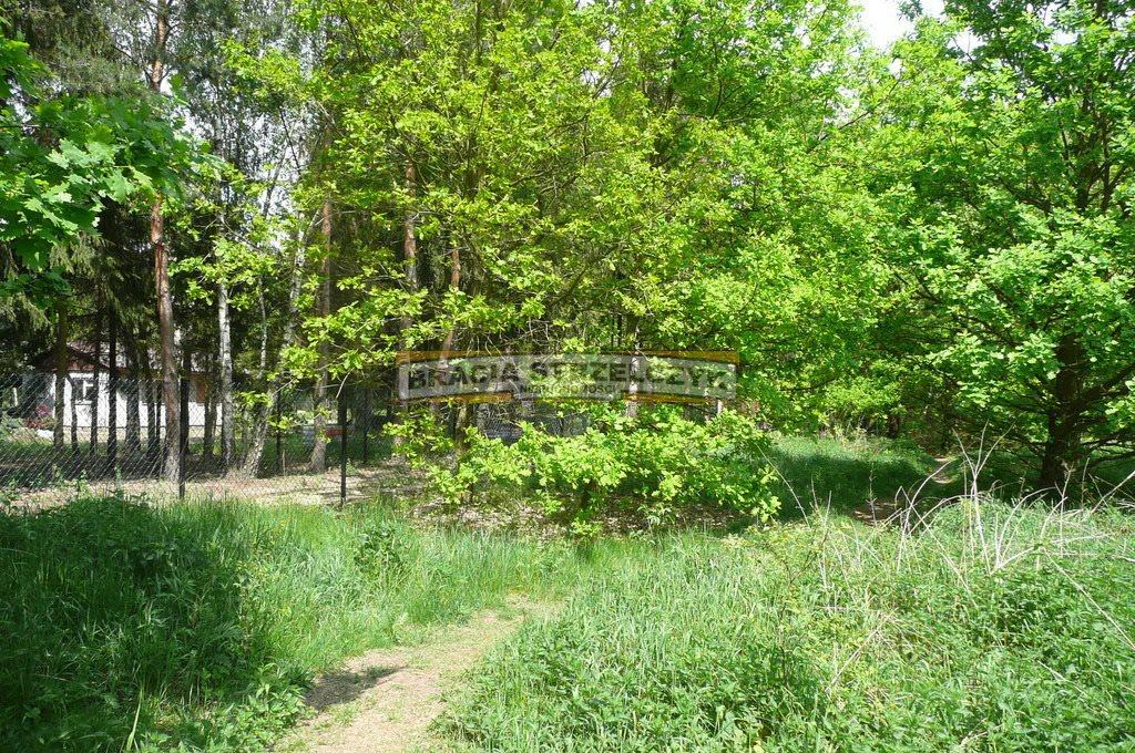 Działka budowlana na sprzedaż Kierszek  4600m2 Foto 1