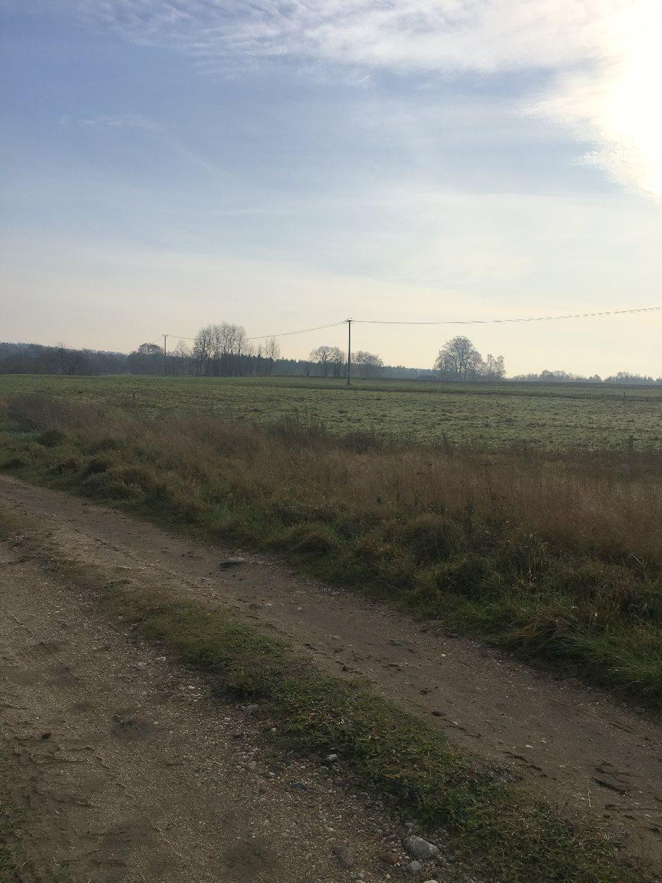 Działka rolna na sprzedaż Rąb, Rąb  1033m2 Foto 3