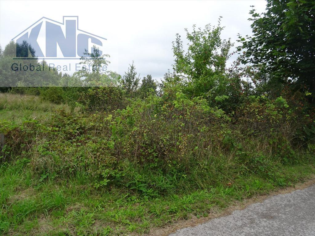 Działka rolna na sprzedaż Korytków  10800m2 Foto 1
