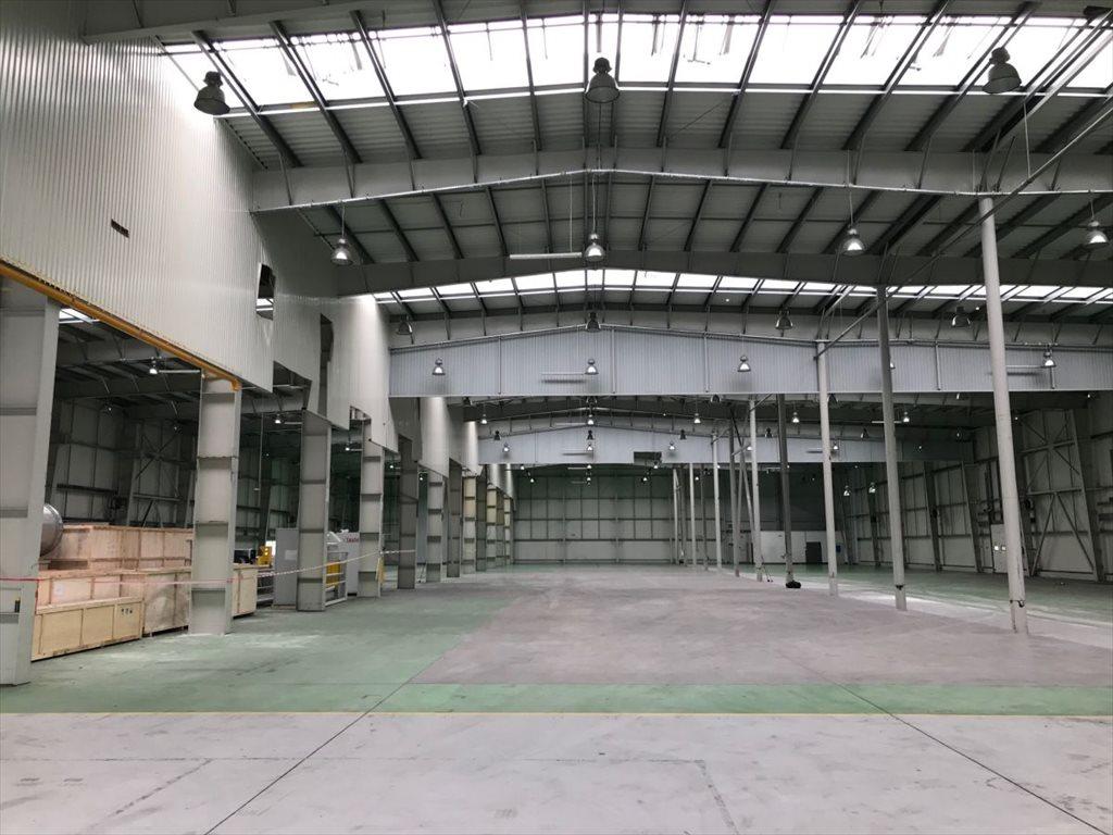 Lokal użytkowy na sprzedaż Cieszyn  5326m2 Foto 3