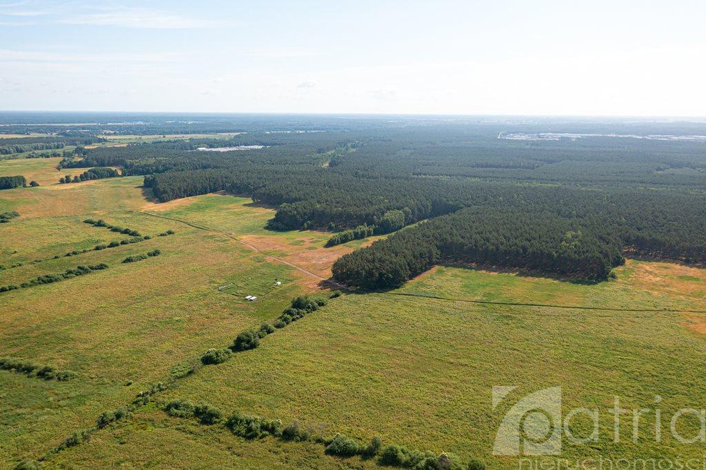 Działka rolna na sprzedaż Komarowo  3287m2 Foto 7